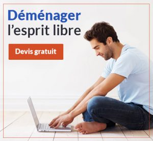 devis demenagement